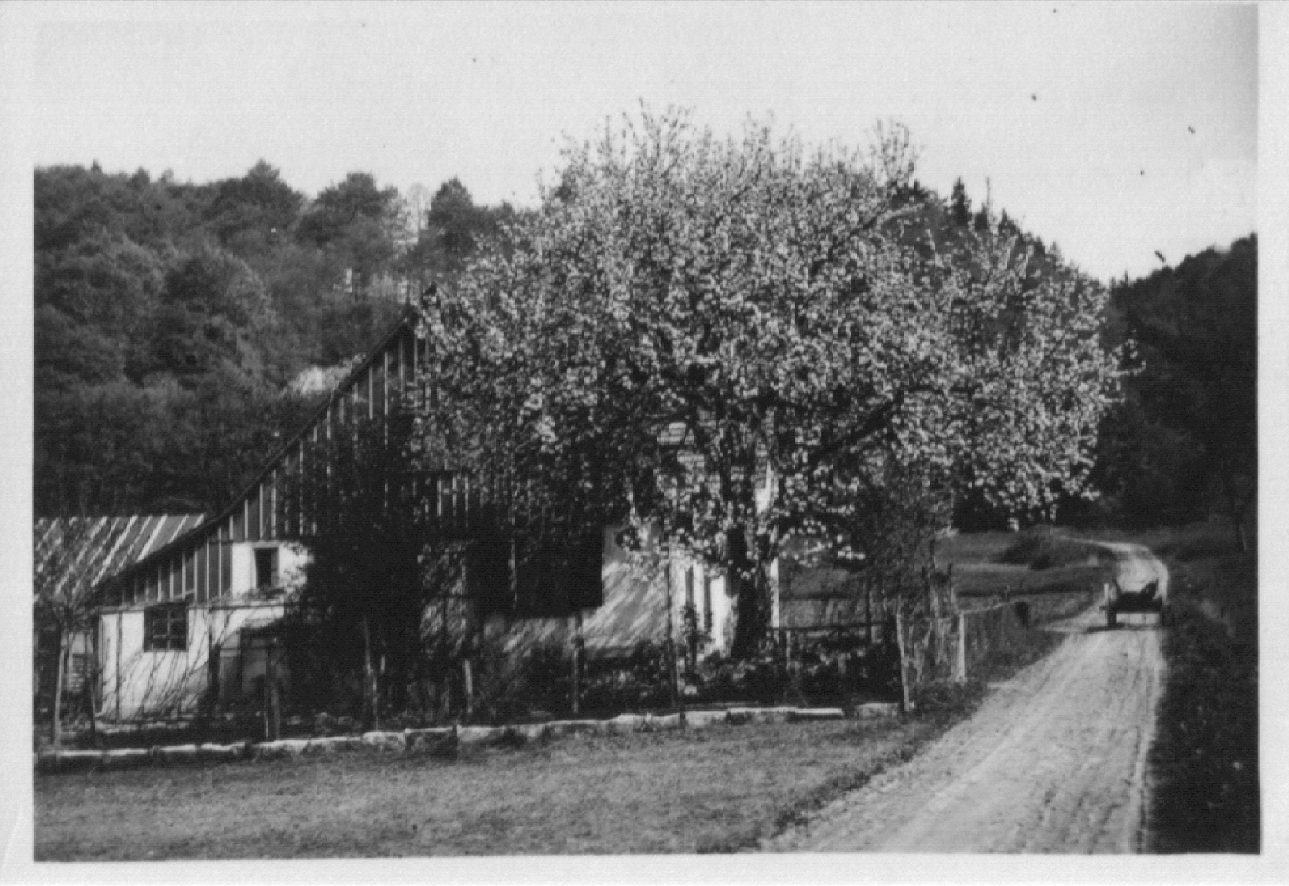 Beringen Huelste Waldheim 1919