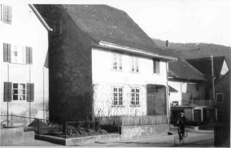 Beringen Rebstock 1935