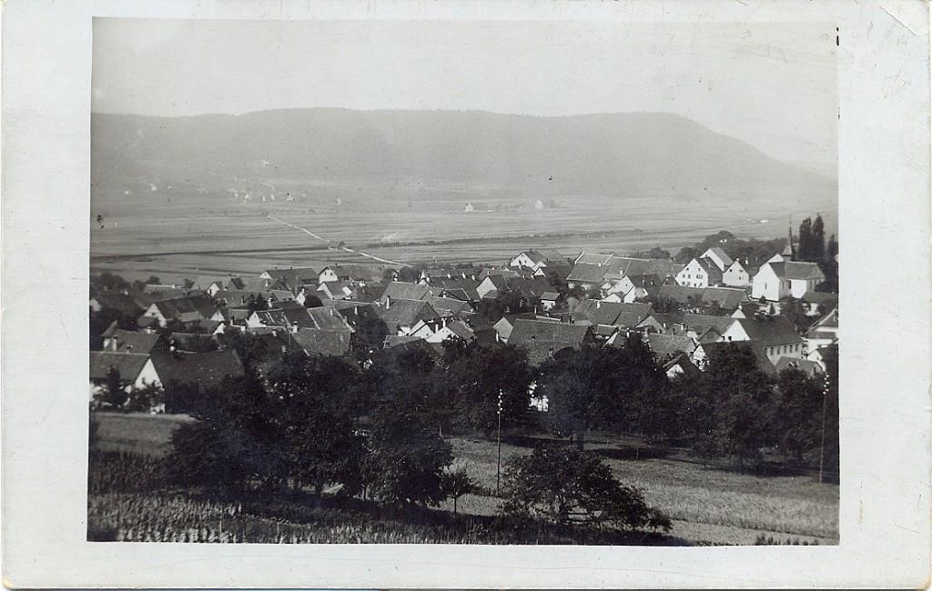 Beringen 0027-1