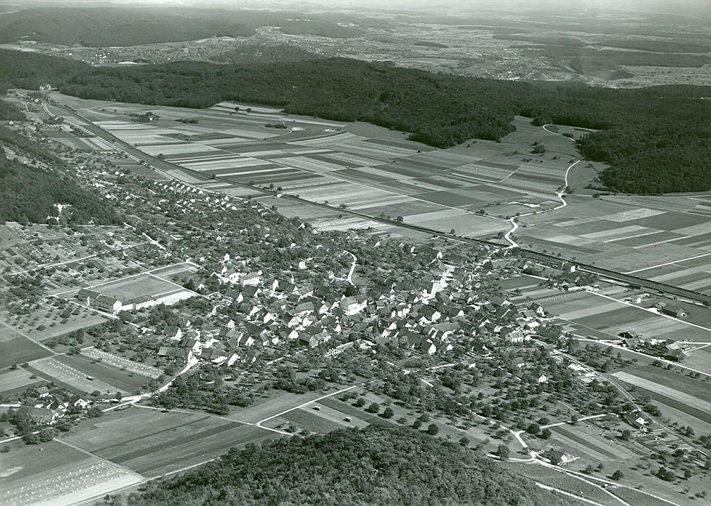 Beringen 1950 August